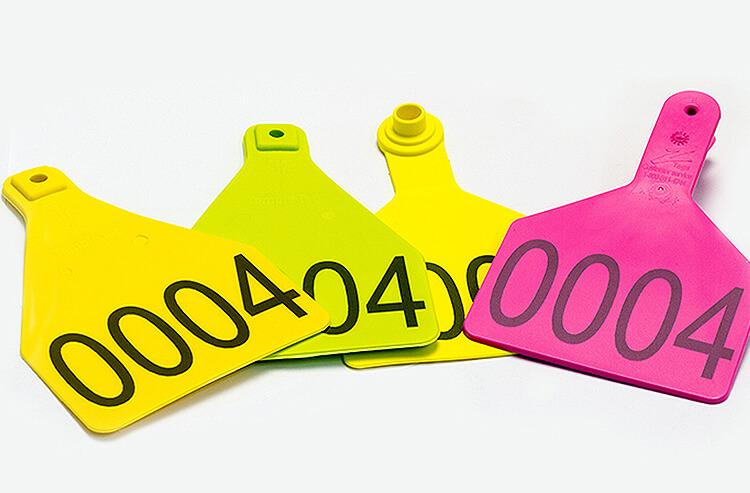 PlasticheColorate Rewolucja w tworzywach sztucznych: laser FLYPEAK do znakowania każdego z nich